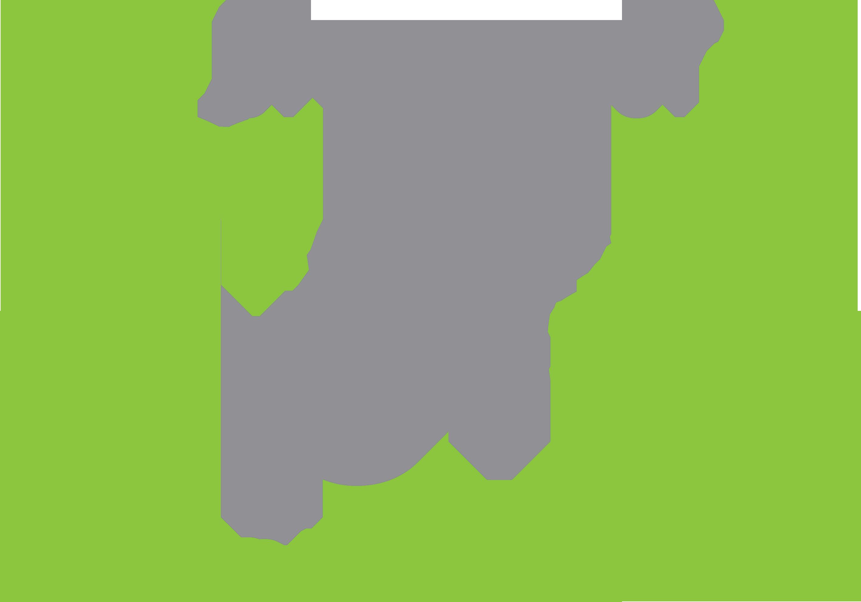MadProcessor